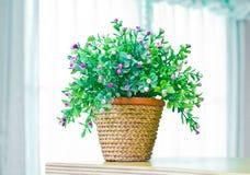 Artificial flowers in pot. Stock Photos