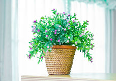 Artificial flowers in pot. Stock Photos