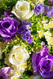 Artificial flowers rose in soft light Stock Image
