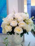 White rose in room. Classic luxury flowers Royalty Free Stock Images