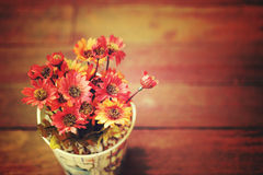Artificial flowers in small pot on wooden table. vintage style image. Stock Images
