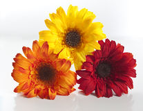 Artificial flowers stacked up. Red, orange, yellow artificial flowers stacked up Royalty Free Stock Image