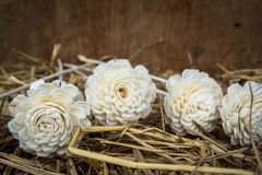 Artificial flowers on straw Stock Images