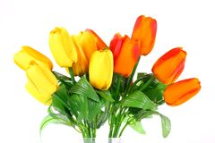 Artificial flowers (tulip) Stock Image