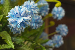 Artificial  flowers two tone light blue Royalty Free Stock Images