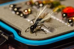 Artificial fly for fishing on a box with lures stock photography