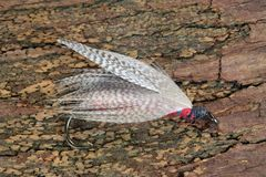 Artificial fly for fly fishing Stock Photo