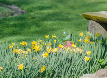 Artificial frog statue near the flowers Stock Photography