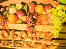 Artificial fruit and vegetable. Horizontal photo, photo took in Moscow's market in Russia Royalty Free Stock Photography