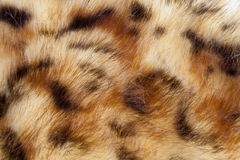 Artificial fur Royalty Free Stock Images
