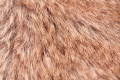 Fur background. Artificial fur background closeup picture Stock Photos