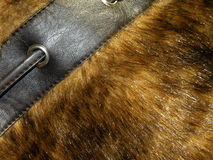 Artificial fur Stock Image