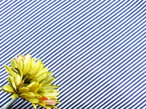 Artificial gerbera flowers bouquet located on Blue and white stripes canvas fabric Royalty Free Stock Images
