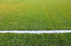 Artificial grass. Green sports field with artificial grass Stock Image