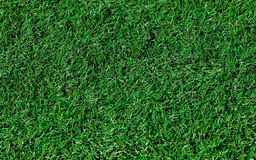 Artificial Grass Background Royalty Free Stock Image