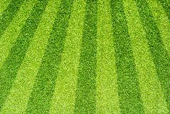 Artificial grass for background Stock Photography