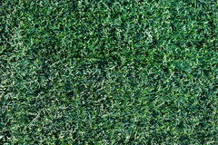 Artificial grass. Background for football baseball soccer stock photo