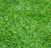 Artificial grass background Royalty Free Stock Images