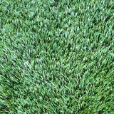 Artificial Grass Stock Photos