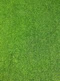 Artificial grass background texture. fresh spring green grass royalty free stock images