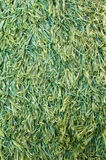 Artificial grass. Close up of fake grass or plastic turf Royalty Free Stock Photo