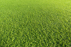 Artificial Grass Field. In plastic material Stock Photos