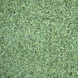 Artificial Grass Field Top View Texture. Close up royalty free stock images