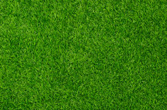 Artificial Grass Field Stock Photography