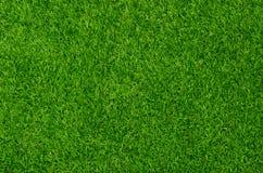 Artificial Grass Field. Top View Texture Stock Photography