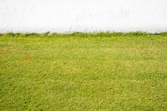 Artificial grass field and wall Stock Photo