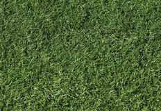 Artificial grass on a football field Stock Photo