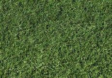 Artificial grass on a football field. Background image of artificial grass, or turf, on a new football field Stock Photo