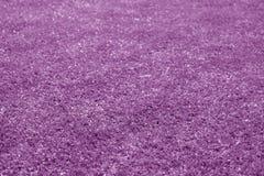 Artificial grass football field loan with blur effect in purple tone