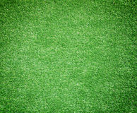 Artificial grass green background Stock Image