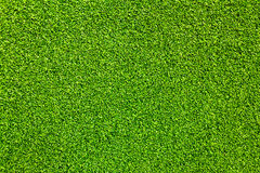 The Artificial grass. Stock Image