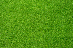 Artificial grass. For indoor & outdoor Royalty Free Stock Images