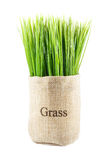 Artificial grass in sack Stock Photos