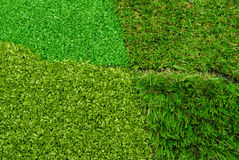 Artificial  grass selection Stock Image