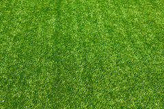 Artificial grass Royalty Free Stock Photo