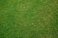Artificial grass soccer field Stock Images