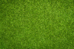 Free Artificial Grass Texture Royalty Free Stock Image - 43166546