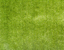 Artificial Grass. Texture and background Stock Photo