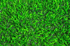 Artificial grass texture Stock Images