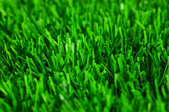 Artificial grass texture. Closeup artificial grass texture background Stock Photography