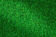 Artificial grass texture or grass background for golf course. soccer field or sports background concept design.  Stock Photo