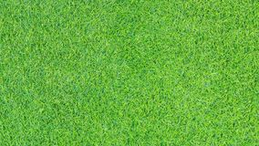 Artificial grass texture or grass background for golf course. soccer field or sports background concept design.  Royalty Free Stock Photos