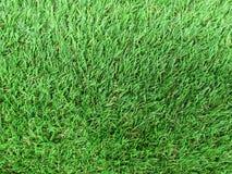 Artificial grass texture Stock Photos