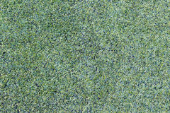 Artificial grass texture Royalty Free Stock Images
