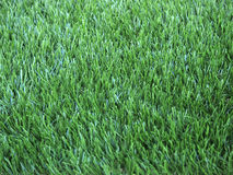 Artificial grass turf background Royalty Free Stock Image