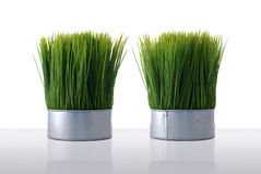 Artificial green grass Stock Photography